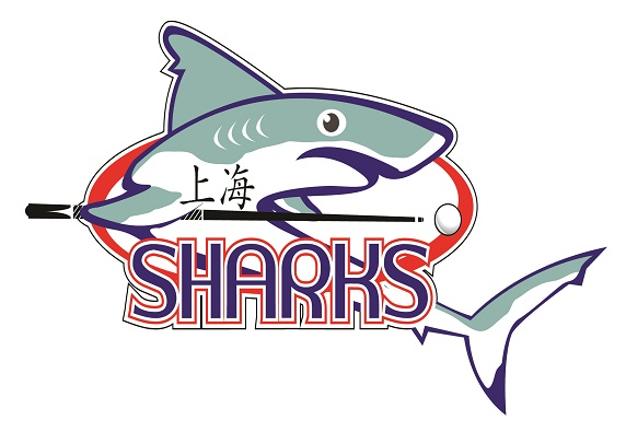 Shangai Sharks small